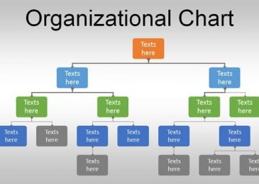 Top 10 Organizational Chart Templates – Company Organisation Chart