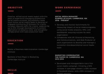Dark & Daring Resume Template